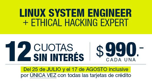 12 cuotas mensuales de $990.- (argentinos)