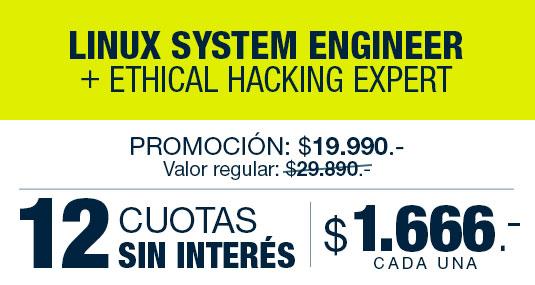 12 cuotas mensuales de $1.666.- (argentinos)